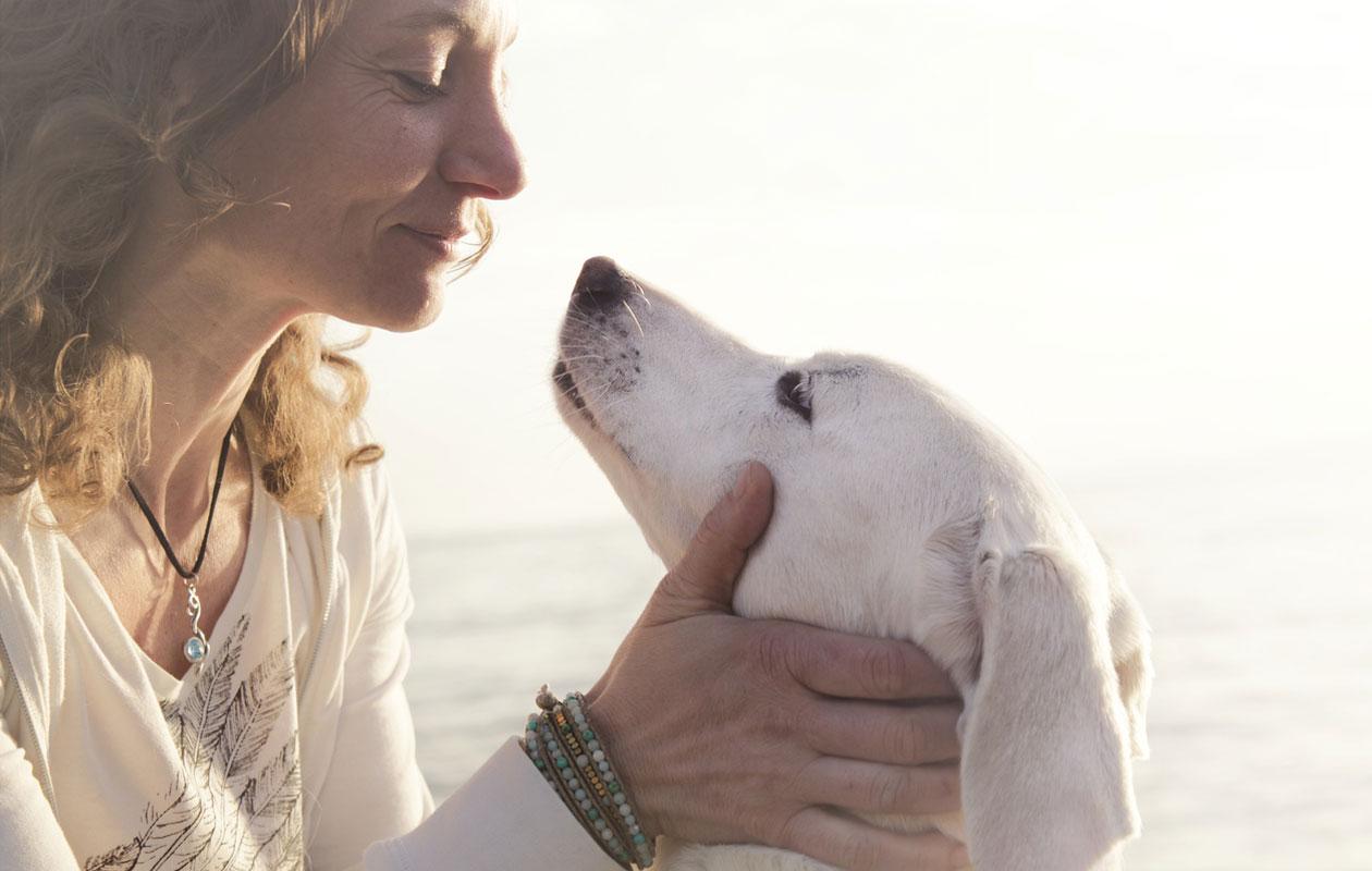koiraihmiset elämä