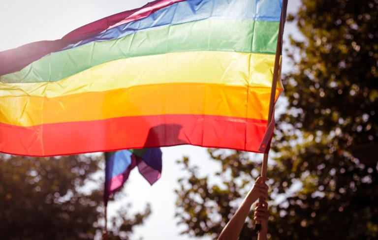 Tiedätkö mitä tarkoittavat apilaperhe, gyneseksuaalisuus ja muunsukupuolisuus? Ota Pride-sanasto haltuun