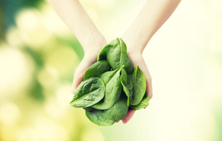 Syötkö riittävästi lehtivihreää? Vihreillä lehtikasviksilla on monia terveysvaikutuksia