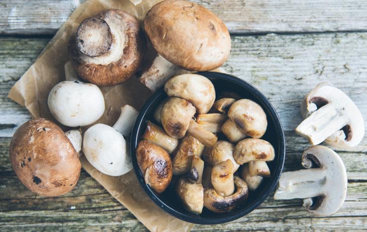 Sienet ovat maistuvia niin tuoreina kuin säilöttyinäkin.