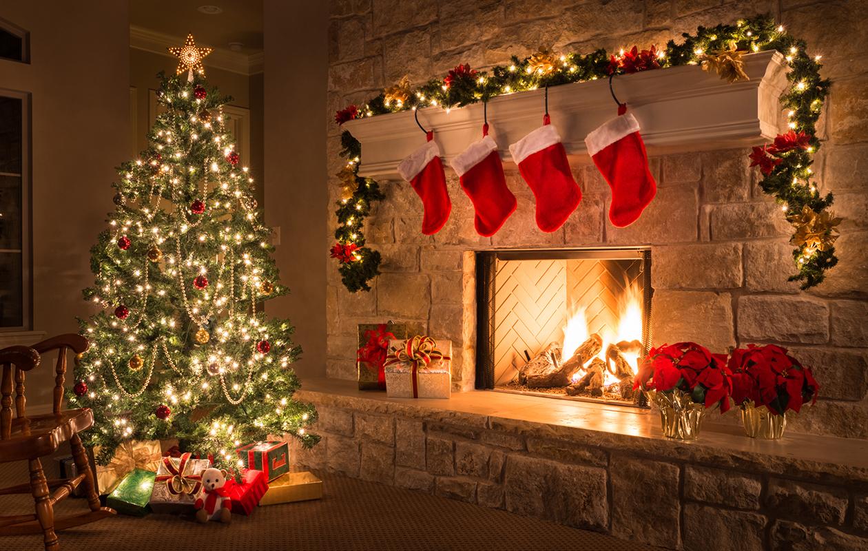 Joulukuusi ja joulukukat eivät ole toistensa ystäviä − eivätkä takankaan.