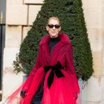 Celine Dionin, 50,  tunnetaan tyylitaiturina, jonka maku muodin suhteen näyttäisi olevan erehtymätön.