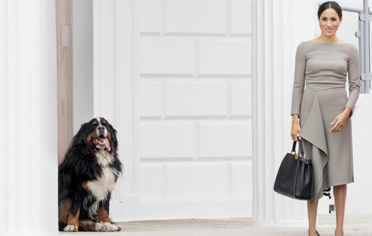Meghanin merkitys brittiläiselle muotiteollisuudelle lasketaan miljardeissa. Hän käyttää usein pienten ja vastuullisten muotisuunnittelijoiden tuotteita. Harmaa mekko on tosin Meghanin ystävän Roland Mouret'n mallistosta ja maksaa noin 2000 euroa.