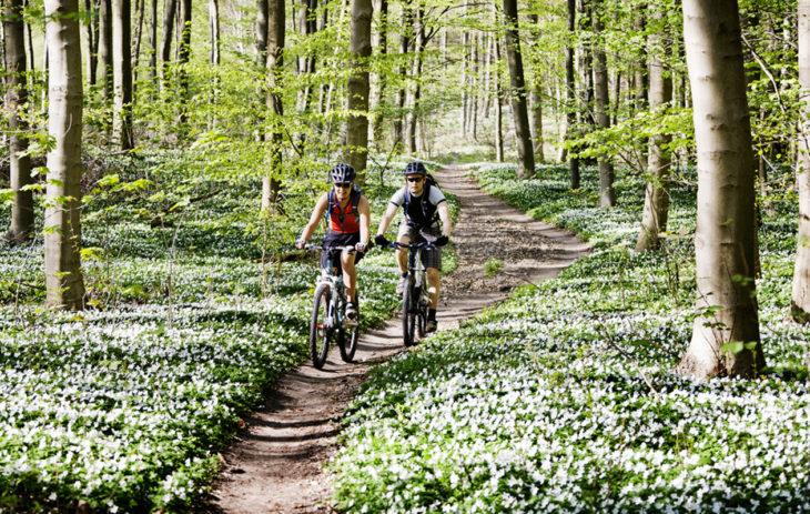 Peruskuntoa paremmaksi pyöräilemällä.