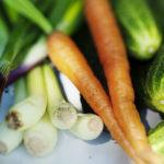Heinäkuun satokausikasviksiin kuuluu mm. avomanakurkku, porkkana, purjo- ja punasipuli.