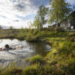 Sirkka Merenluoto aloittaa päivänsä uimalla kaivospiirinsä pienessä tunturilammessa. Päivätyönsä pankissa hän jätti 1990.