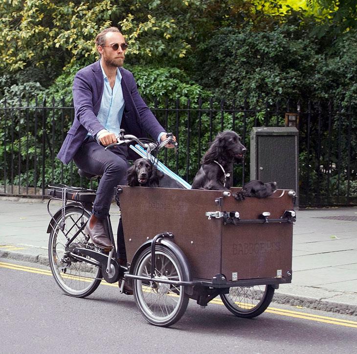 Katen pikkuveli, 32-vuotias James Middleton on kertonut masennuksestaan julkisesti. Parantumisessa Jamesia ovat auttaneet koirat, joita hänellä on yhteensä viisi.