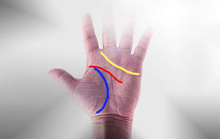 Päänviiva on merkitty kuvaan punaisella, elämänviiva sinisellä ja sydämenviiva keltaisella.