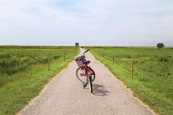 Pärnu nähdään polkupyöräillen.