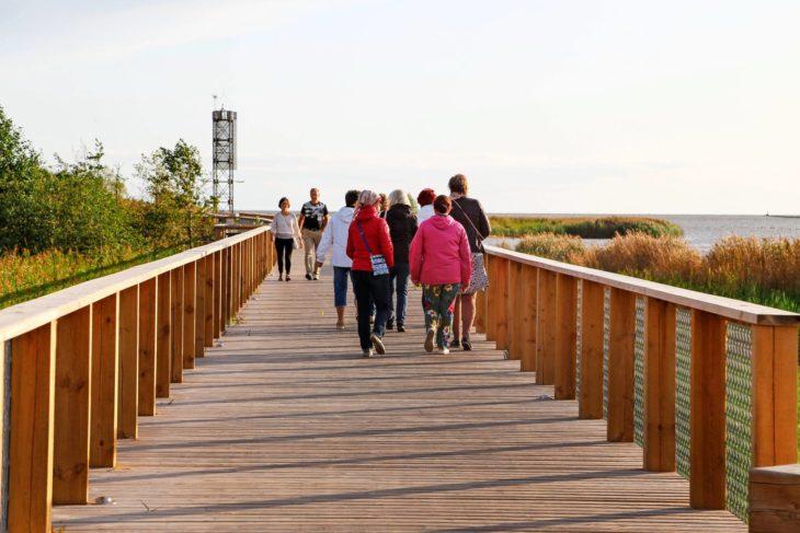 Pärnun rantapuiston polku vie aallonmuurtajalle.