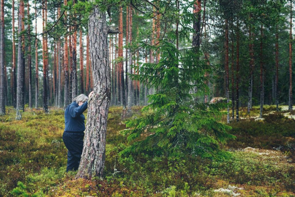 Ylivelkaantuminen ahdistaa Hannaa. Metsä on paikka, jossa pelko selviytymisestä hetkeksi hellittää, eikä se maksa mitään.
