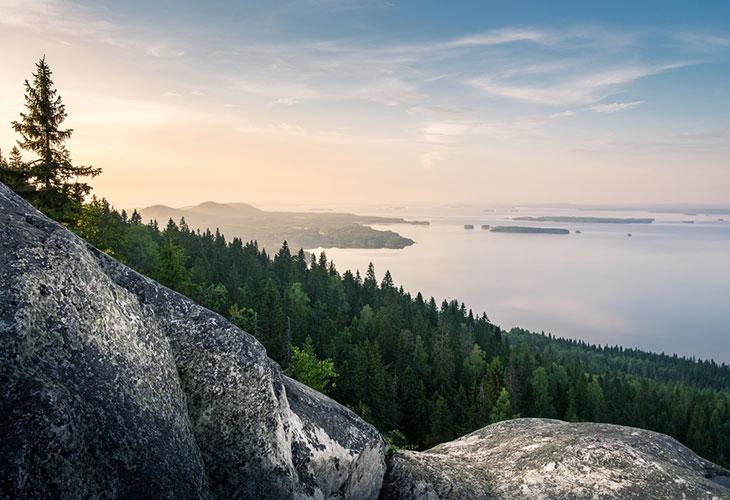 Suomen matkakohteet ihastuttavat. Niistä yksi on kuvassa koreileva Koli.