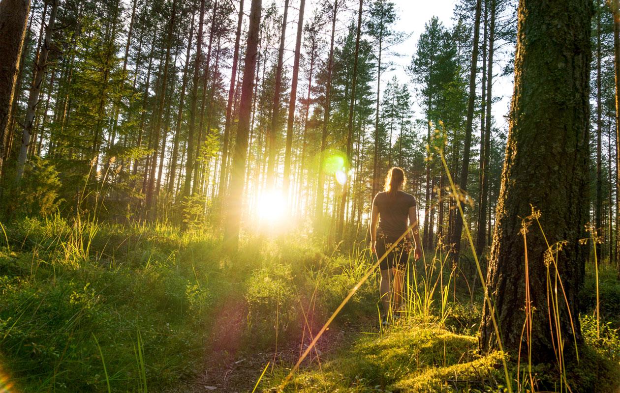 nainen metsässä, luksus
