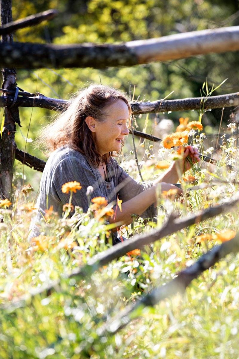 Mia halusi istuttaa ympäri Harvaluodon kyläkoulun pihaa kasveja, jotka ovat joko kauniita tai syötäviä ja parhaassa tapauksessa molempia.