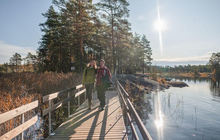 Helpot retkeilyreitit, Teijon kansallispuisto, silta.