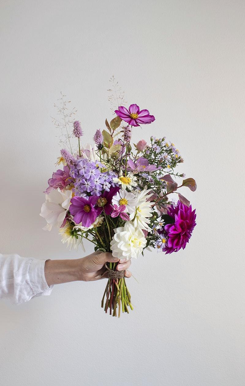 Sara rakastaa Suomen syksyä. Kukkasato on silloin parhaimmillaan. Valloittavan sekakimpun hän poimi viljelypalstaltaan.