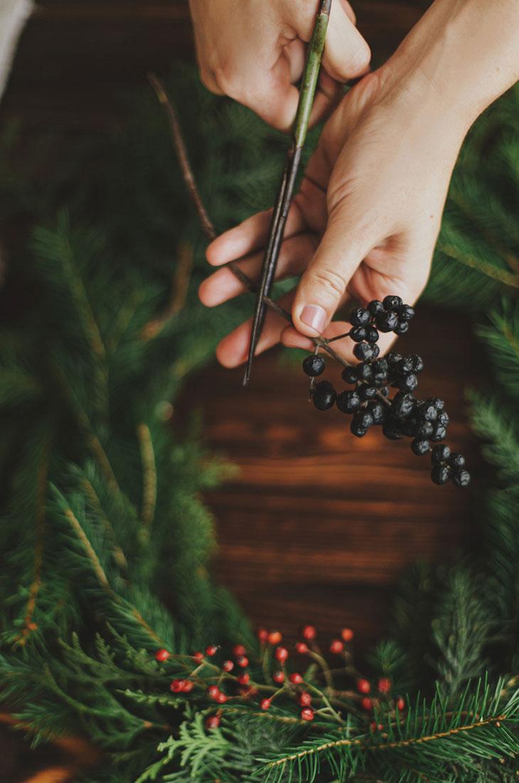 Joulukukat inspiroituvat luonnosta. Luonnosta kerätyt havut saavat aikaan ihanaa tuoksia. Kuvassa nainen leikaa marjanoksaa.