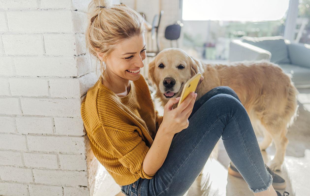 Nainen katsoo nauraen puhelinta, vieressä kultainennoutaja. Entisen kumppanin uusi elämäntilanne voi aiheuttaa ristiriitaisia tunteita.