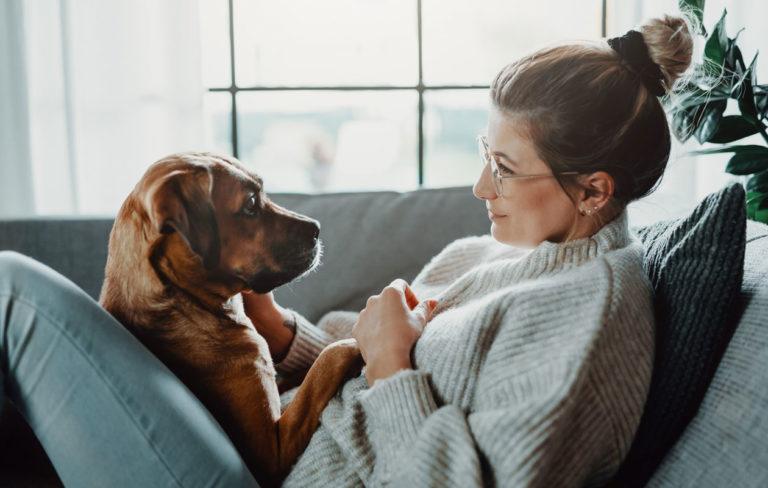 Eroahdistus voi tulla lemmikille, kun omistajan kanssa on vietetty paljon aikaa kotona. Kuvassa nainen koiran kanssa sohvalla.