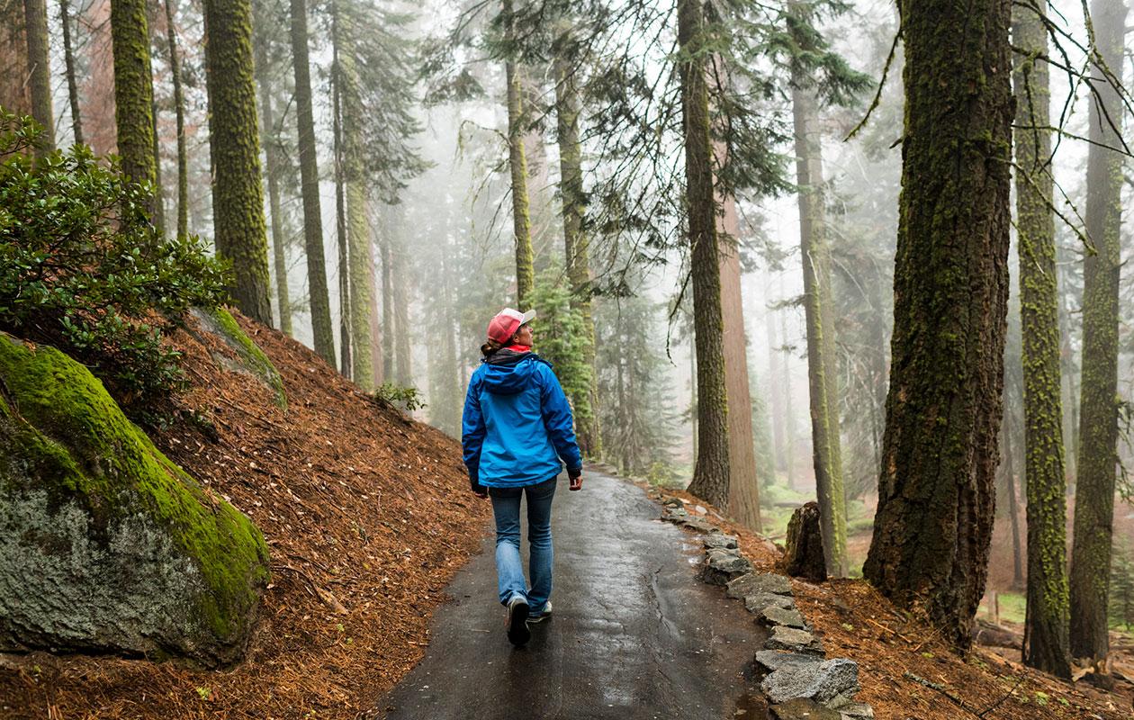 Kävelymeditaatio voi olla hyvä vaihtoehto sille, joka kokee paikoillaan meditoimisen vaikeaksi.