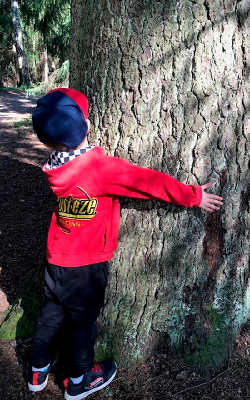Lapsi ja puu