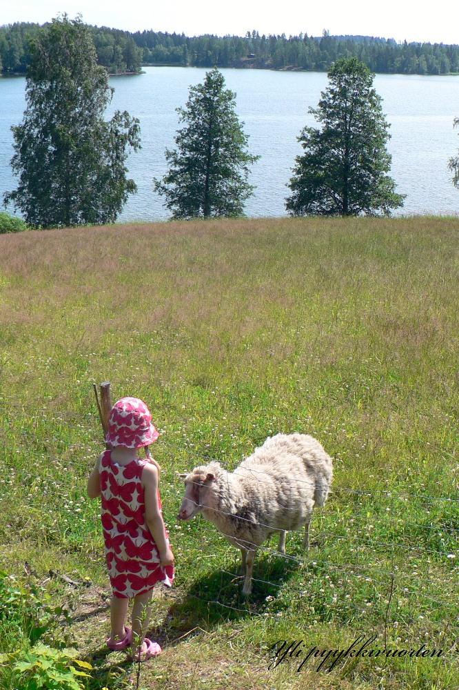 lapsi, tyttö, lammas